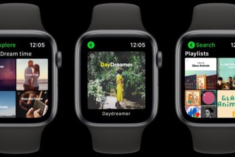 Apollo, l'app Spotify non officielle pour Apple Watch a été retirée de l'AppStore