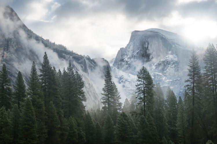 Yosemite : Safari et iPhoto plantent avec la dernière mise à jour d'iTunes