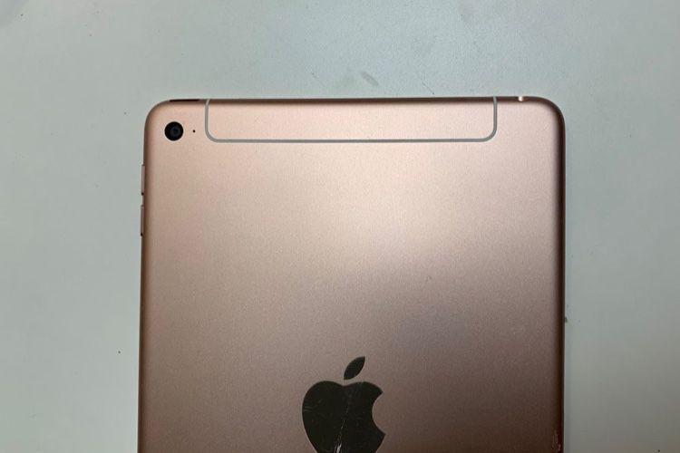 L'iPad mini 5 et l'iPad 7 de nouveau annoncés pour cette année