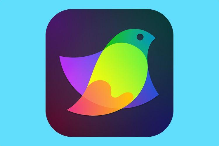 Amadine, une nouvelle application de dessin vectoriel sur macOS