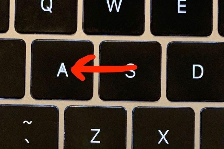 Le clavier papillon se décolore-t-il plus rapidement que les autres?