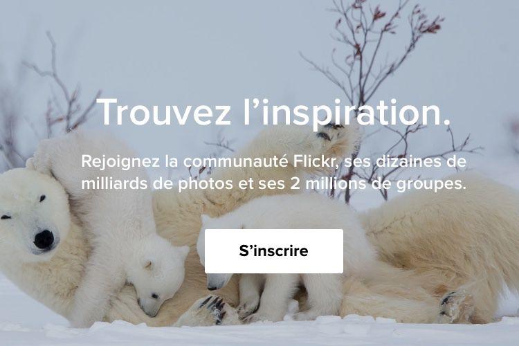 Flickr : un sursis d'un mois avant la limite à 1000 photos pour les comptes gratuits