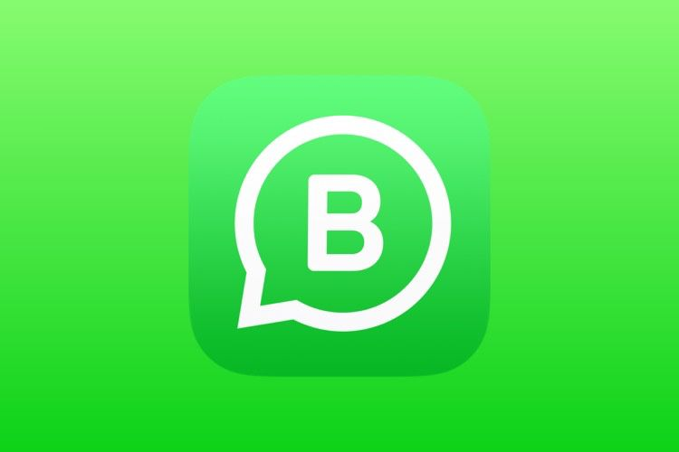 L'app WhatsApp Business est disponible en France