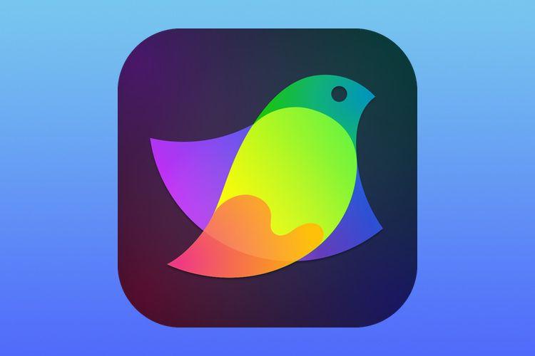 Dessin vectoriel : Amadine disponible à 22 € sur Mac