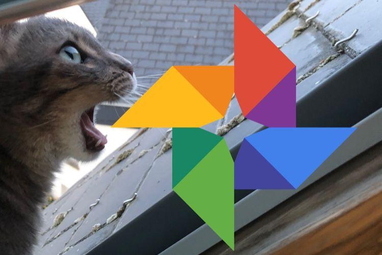 Attention, les partages avec Google Photos sont toujours publics
