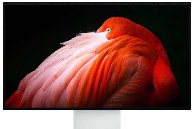 N'allez surtout pas nettoyer le Pro Display XDR nano-texturé avec autre chose que le chiffon d'Apple, malheureux