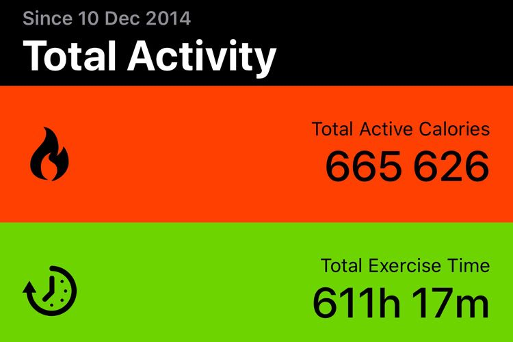 Activity Stats affiche toutes les activités jamais enregistrées par votre AppleWatch