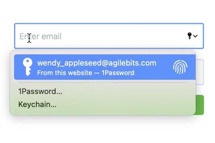 macOS Big Sur : le remplissage automatique des mots de passe ouvert aux gestionnaires tiers