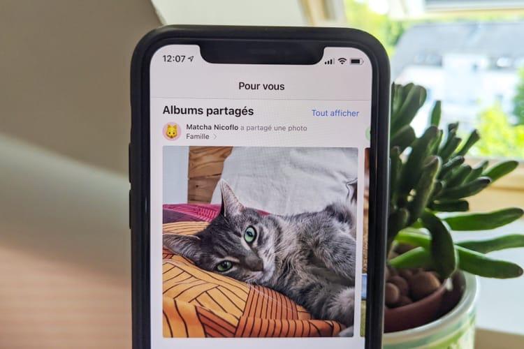 iOS14 ajoute des options utiles pour les albums photo partagés
