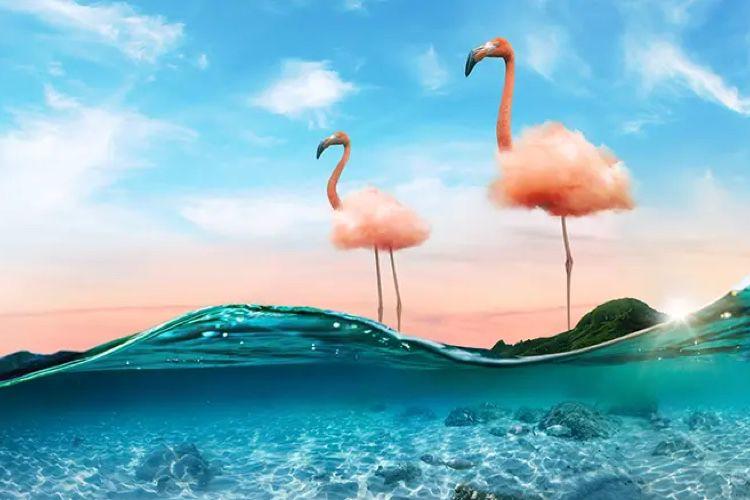 Adobe MAX2020 : une initiative pour identifier les fakes, que Photoshop simplifie comme jamais