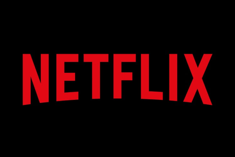 Netflix, grand gagnant des plateformes de streaming en janvier en France