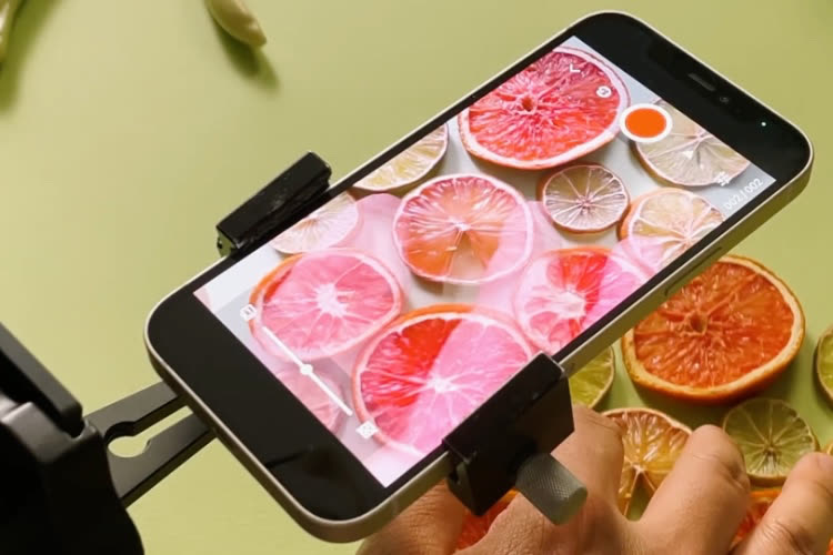 Des fleurs et des fruits plein l'iPhone 12