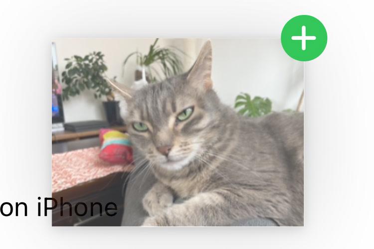Le glisser/déposer sort aussi des apps sur les iPhone avec iOS15
