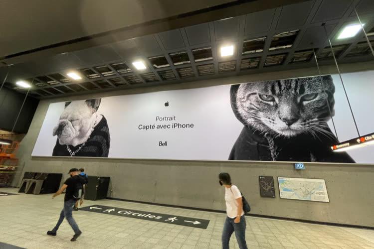 image en galerie : Des ambassadeurs poilus pour promouvoir le mode Portrait de l'iPhone