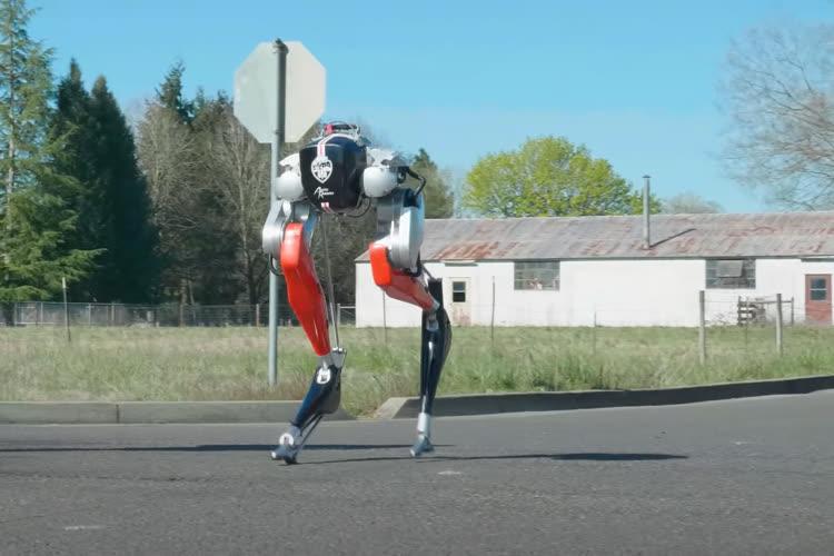 Pour la première fois, un robot bipède a réussi à courir sur 5 kilomètres d'une seule traite
